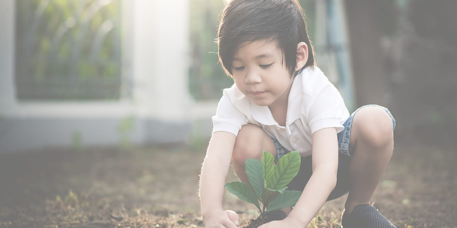A toddler playing outside in the dirt helping plant a plant in the ground